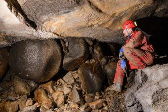 ŠTÚDIO TA3: Paleontológ A. Čerňanský o najstaršom stavovci na Slovensku